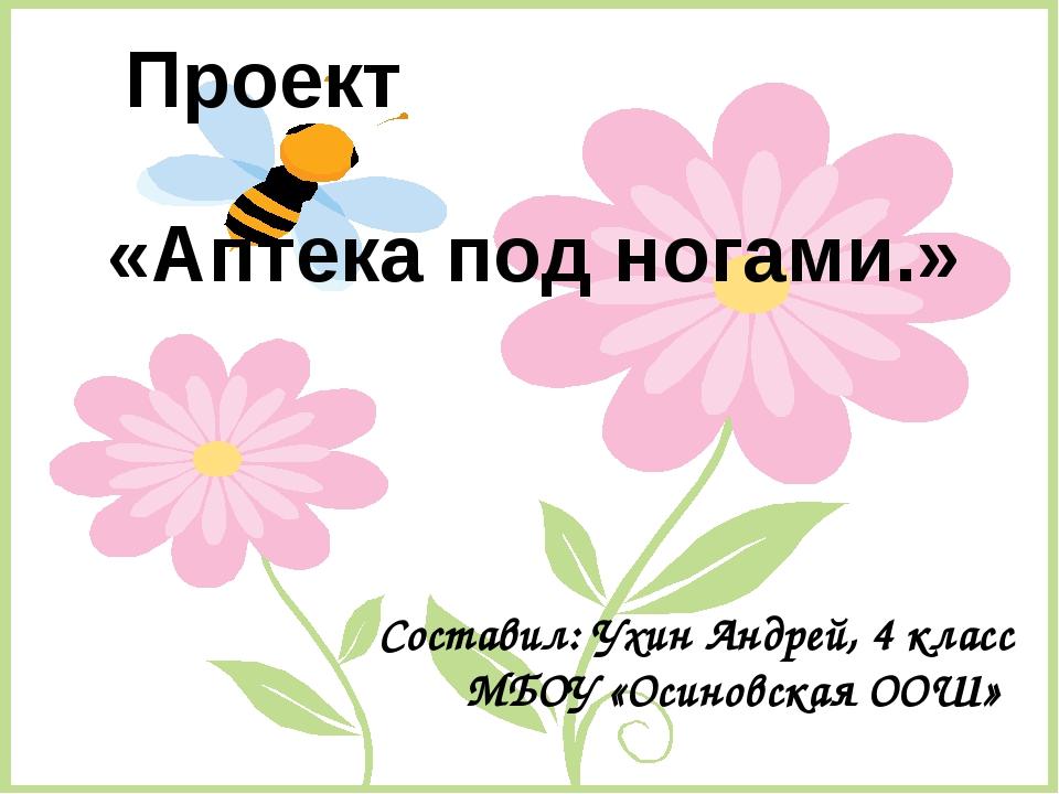 «Аптека под ногами.» Проект Составил: Ухин Андрей, 4 класс МБОУ «Осиновская О...