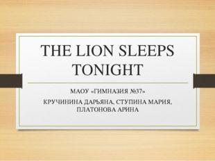 THE LION SLEEPS TONIGHT МАОУ «ГИМНАЗИЯ №37» КРУЧИНИНА ДАРЬЯНА, СТУПИНА МАРИЯ,