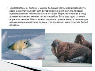 Действительно, тюлени и моржи большую часть жизни проводят в воде, а на сушу