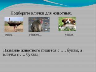 Подберите клички для животных. страус… обезьяна… собака… Название животного