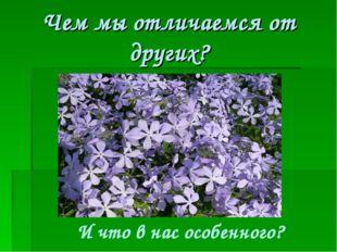 Чем мы отличаемся от других? И что в нас особенного?