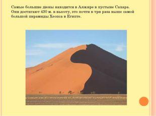 Самые большие дюны находятся в Алжире в пустыне Сахара. Они достигают 430 м.