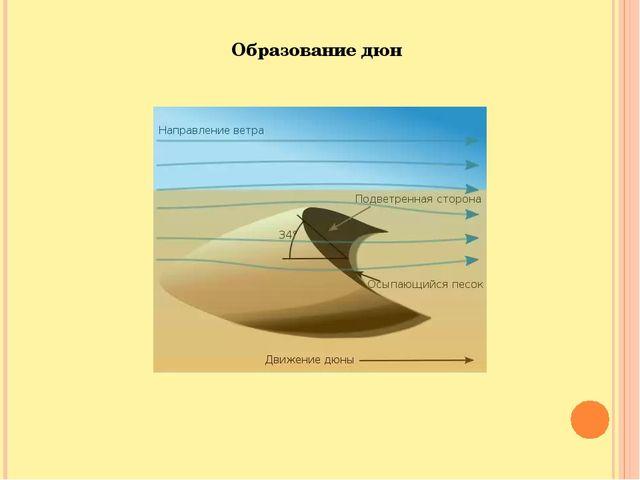 Образование дюн