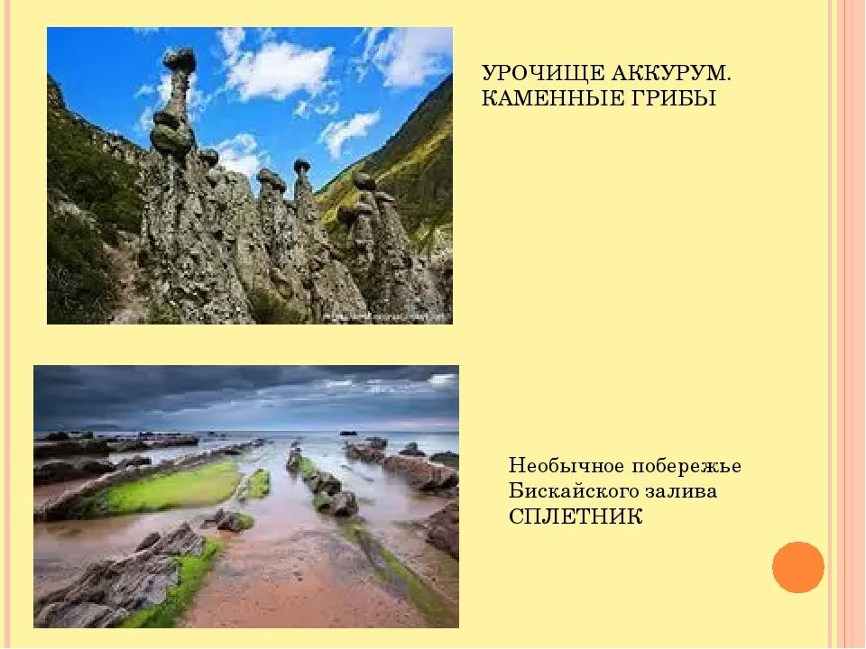 УРОЧИЩЕ АККУРУМ. КАМЕННЫЕ ГРИБЫ Необычное побережье Бискайского залива СПЛЕТНИК