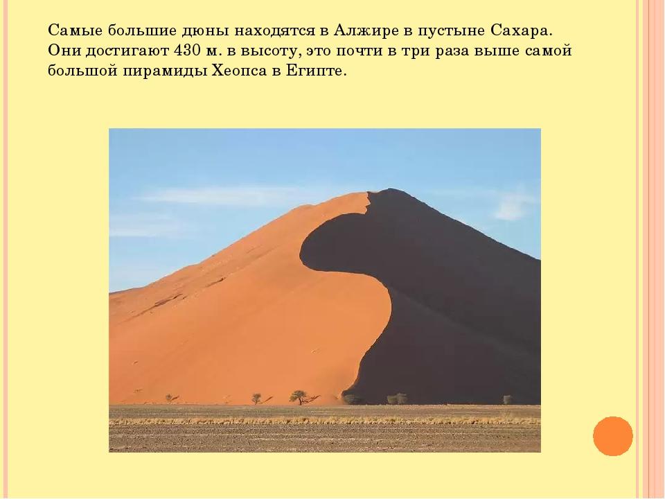 Самые большие дюны находятся в Алжире в пустыне Сахара. Они достигают 430 м....