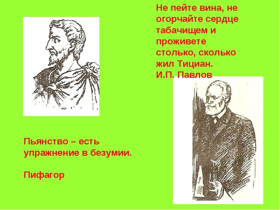 Пьянство – есть упражнение в безумии. Пифагор Не пейте вина, не огорчайте сер...