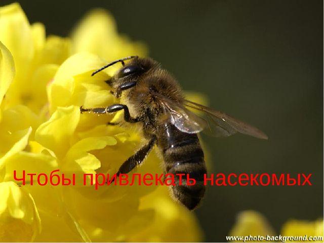 Чтобы привлекать насекомых