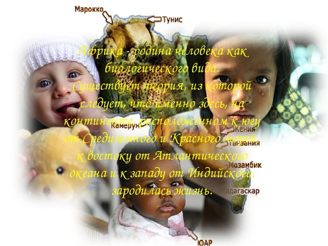 Африка - родина человека как биологического вида. Существует теория, из котор...