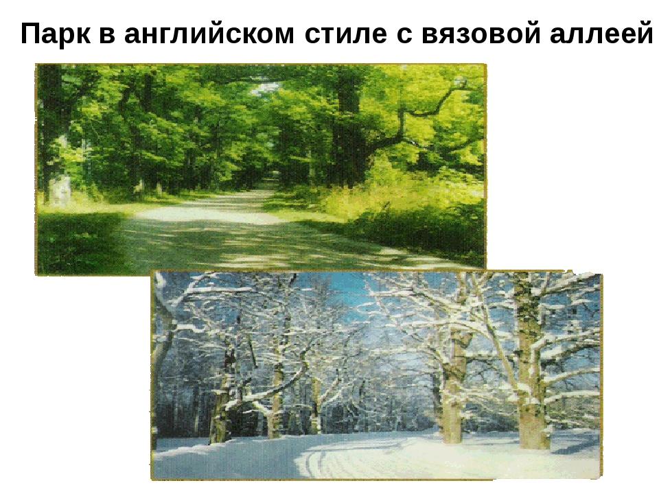 Парк в английском стиле с вязовой аллеей