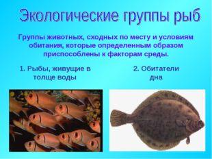 Группы животных, сходных по месту и условиям обитания, которые определенным о