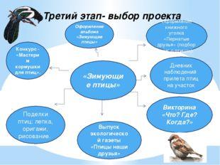 Третий этап- выбор проекта «Зимующие птицы» Дневник наблюдений прилета птиц н