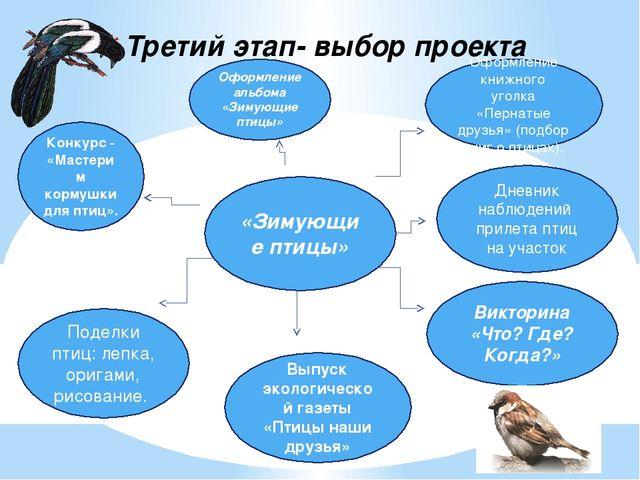 Третий этап- выбор проекта «Зимующие птицы» Дневник наблюдений прилета птиц н...