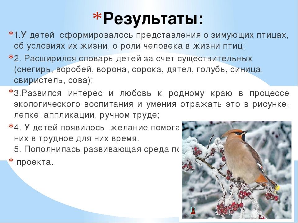 Результаты: 1.У детей сформировалось представления о зимующих птицах, об усло...