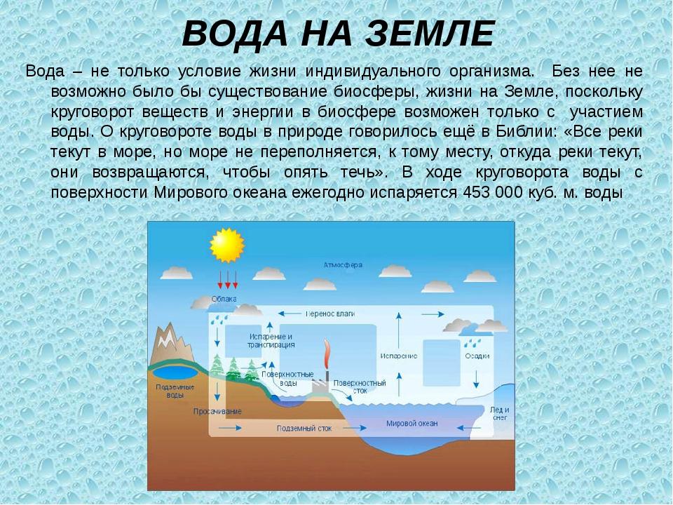 Вода – не только условие жизни индивидуального организма. Без нее не возможно...