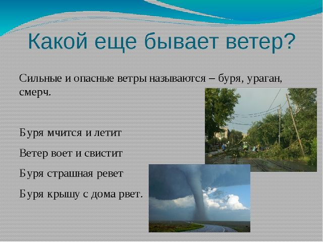 Какой еще бывает ветер? Сильные и опасные ветры называются – буря, ураган, см...