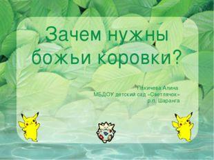 Зачем нужны божьи коровки? Пакичева Алина МБДОУ детский сад «Светлячок» р.п.