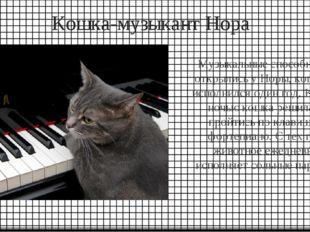 Кошка-музыкант Нора Музыкальные способности открылись у Норы, когда ей исполн