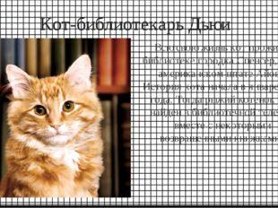 Кот-библиотекарь Дьюи Всю свою жизнь кот прожил в библиотеке городка Спенсер,