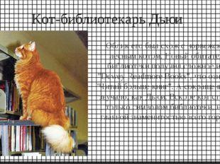 Кот-библиотекарь Дьюи Облик его был схож с норвежским лесным котом. Новый оби