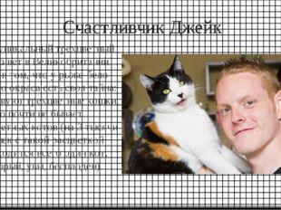 Счастливчик Джейк Этот уникальный трехцветный кот живет в Великобритании. Дел
