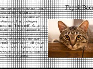 Герой Васька В Ульяновском поселке беспородный кот Васька героически защитил