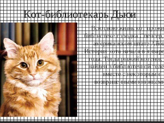 Кот-библиотекарь Дьюи Всю свою жизнь кот прожил в библиотеке городка Спенсер,...