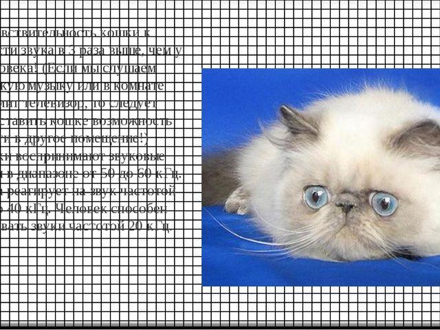 Чувствительность кошки к громкости звука в 3 раза выше, чем у человека! (Если...