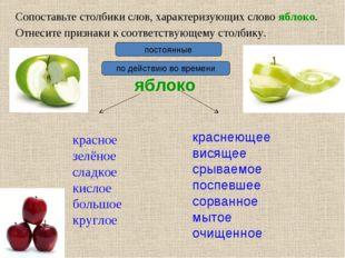 Сопоставьте столбики слов, характеризующих слово яблоко. яблоко красное зелён