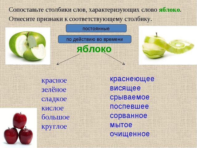 Сопоставьте столбики слов, характеризующих слово яблоко. яблоко красное зелён...