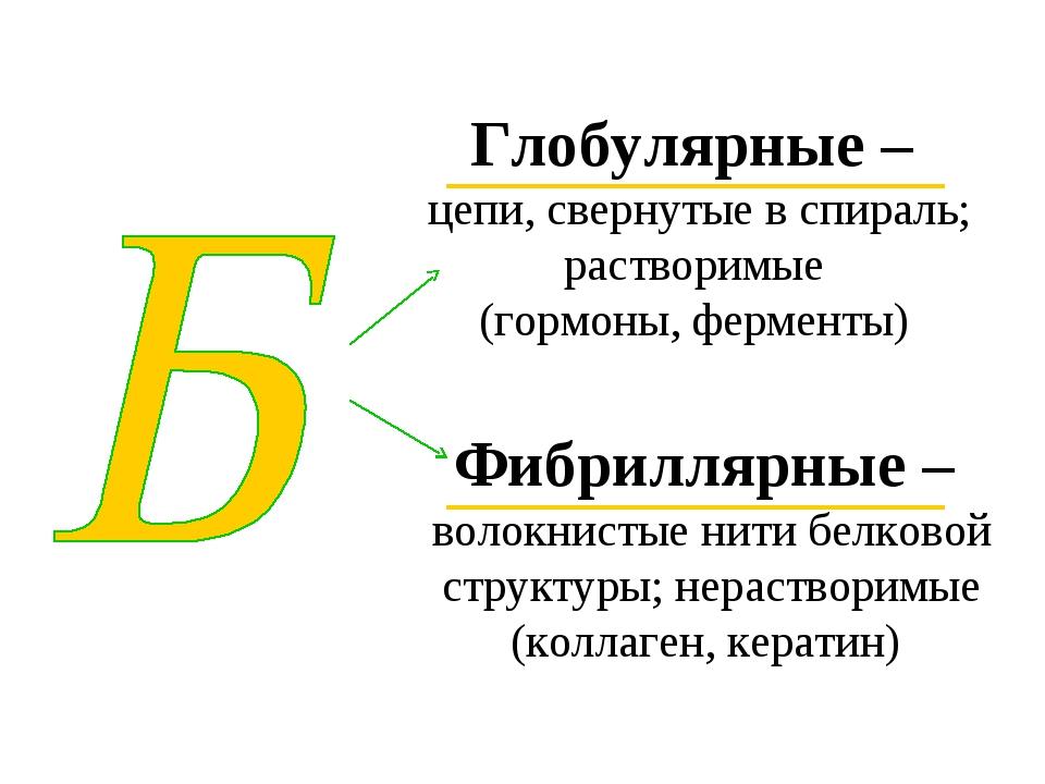 Глобулярные – цепи, свернутые в спираль; растворимые (гормоны, ферменты) Фибр...
