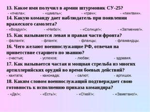 13. Какое имя получил в армии штурмовик СУ-25? - «пчела»; - «шмель»; - «грач»