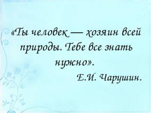 «Ты человек — хозяин всей природы. Тебе все знать нужно». Е.И. Чарушин.