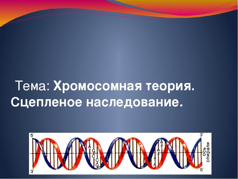 Лекция: Тема: Хромосомная теория. Сцепленое наследование.