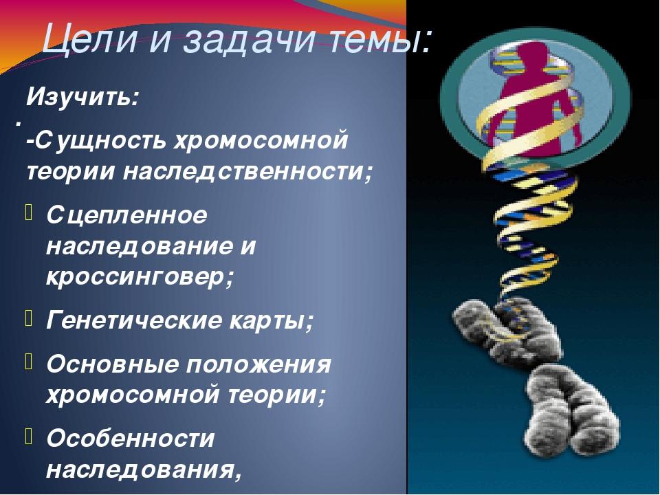 Цели и задачи темы: . Изучить: -Сущность хромосомной теории наследственности;...