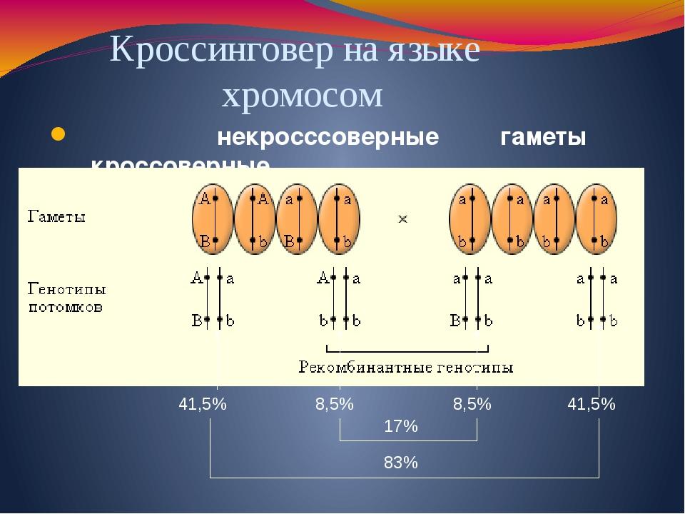 некросссоверные гаметы кроссоверные Кроссинговер на языке хромосом 8,5% 8,5%...