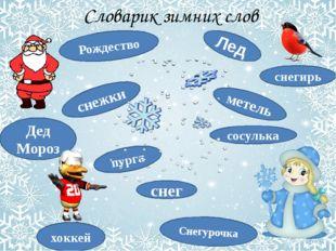 Словарик зимних слов снег метель Дед Мороз снегирь хоккей снежки Снегурочка Р
