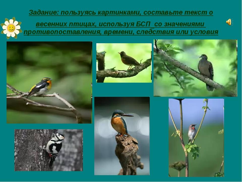 Задание: пользуясь картинками, составьте текст о весенних птицах, используя Б...