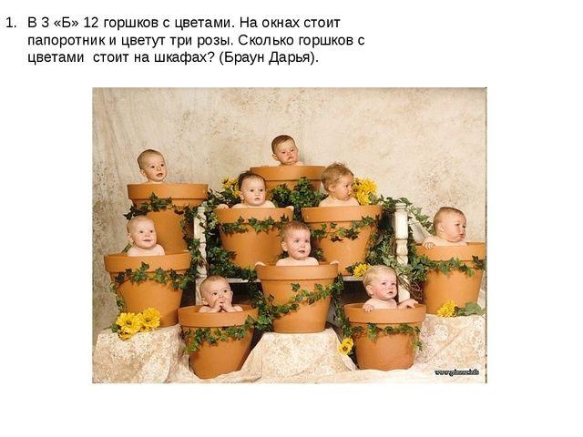 В 3 «Б» 12 горшков с цветами. На окнах стоит папоротник и цветут три розы. Ск...