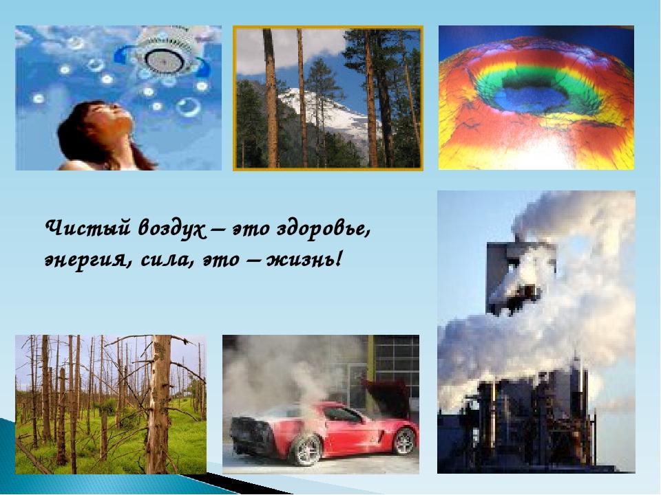 Чистый воздух – это здоровье, энергия, сила, это – жизнь!