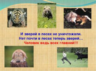 И зверей в лесах не уничтожали. Нет почти в лесах теперь зверей… Человек ведь