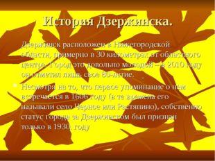 История Дзержинска. Дзержинск расположен в Нижегородской области, примерно в