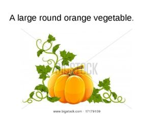 A large round orange vegetable.