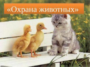 «Охрана животных»