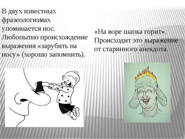 В двух известных фразеологизмах упоминается нос. Любопытно происхождение выра...