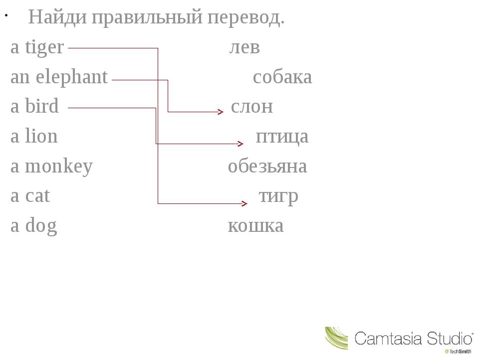 Найди правильный перевод. a tiger лев an elephant собака a bird слон a lion...