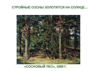 «СОСНОВЫЙ ЛЕС», 1889 Г. СТРОЙНЫЕ СОСНЫ ЗОЛОТЯТСЯ НА СОЛНЦЕ…