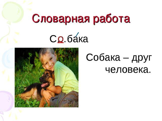 Словарная работа С…бака Собака – друг человека.