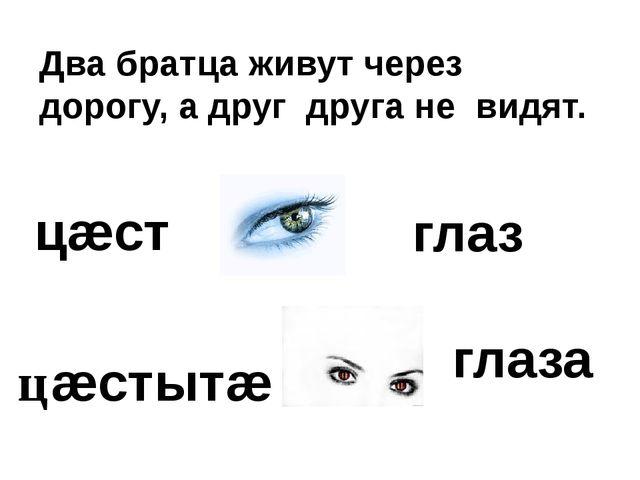Два братца живут через дорогу, а друг друга не видят. цæст цæстытæ глаз глаза