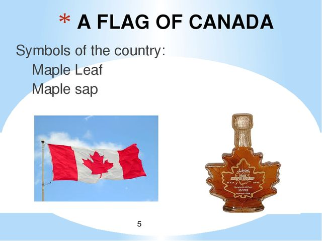 A FLAG OF CANADA Symbols of the country: Maple Leaf Maple sap