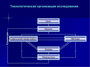 Технологическая организация исследования Коррекция Цель Задачи Формы Содержан